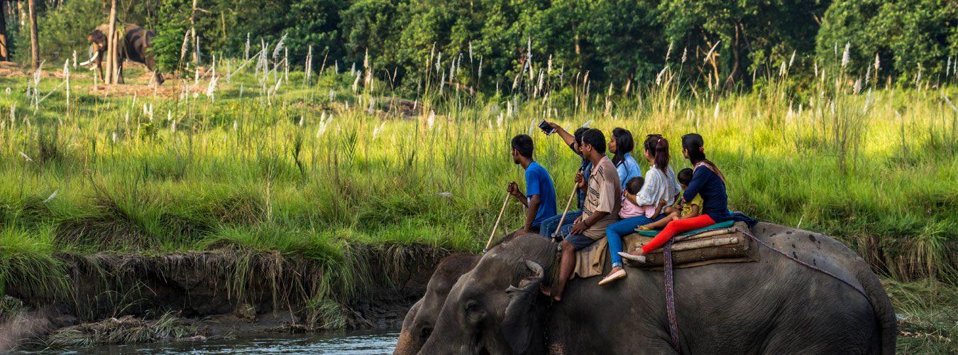 Elephant-back-jungle-safari