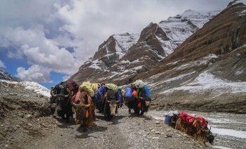Kailash Trekking Package