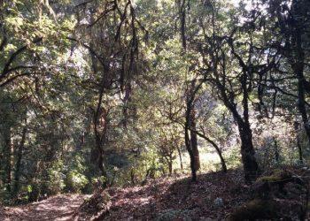 Budhanilkantha hiking