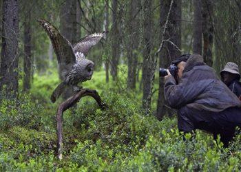 Nepal-Bird-Watching